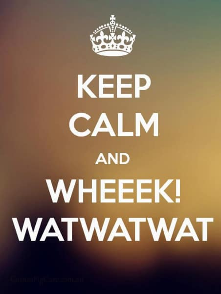 Keep Calm and Watwatwat